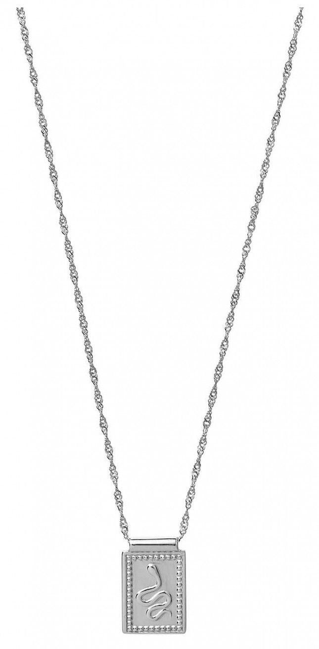 Cluse Force Tropicale Silver Twisted Chain Tag Pedant Necklace CLJ22014